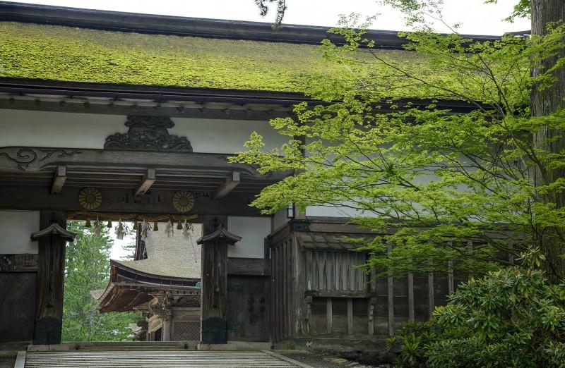 Kongōbu-ji 金剛峯寺 koyasan