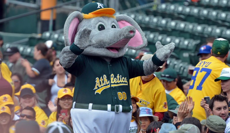 stomper oakland a's athletics mascot elephant