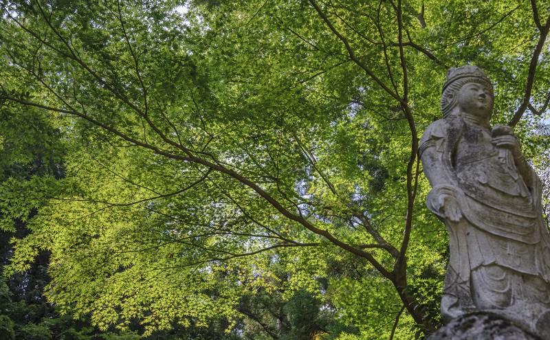 shosenkyo hike japanese maples buddhist statue
