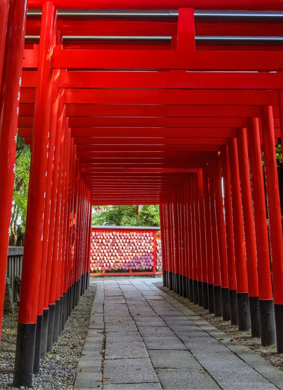torii tunnel of love inuyama