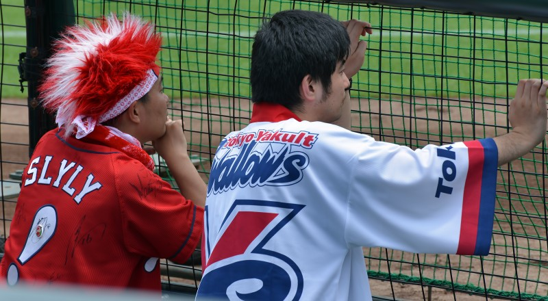 carp swallows fans slyly hiroshima