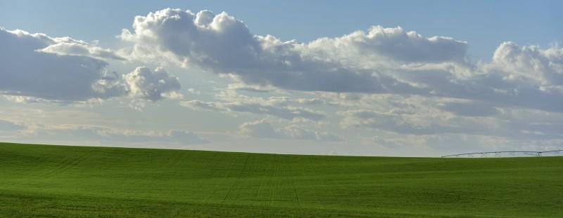 walla walla washington field clouds