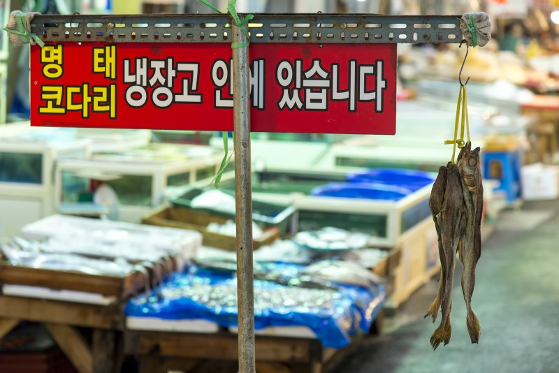 yangdong fish market gwangju south korea