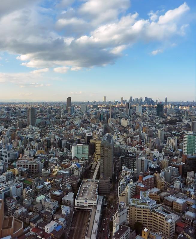 Ebisu Garden Place Tower view of tokyo