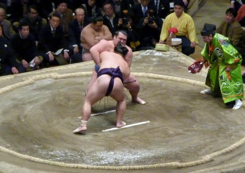 kotoshogiku sumo