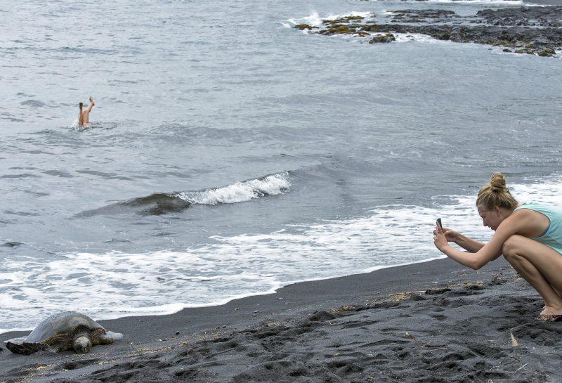 ellie-black-sand-beach-hawaii-turtle-feet