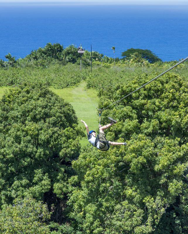ryan hawaii zipline umauma falls zipline experience zip line