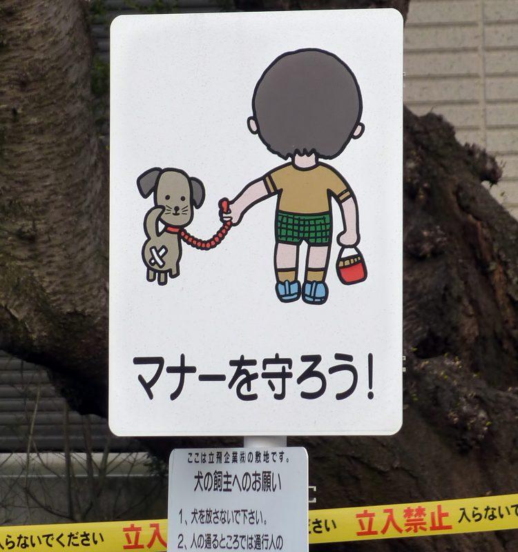 no dog poop japanese signs japan