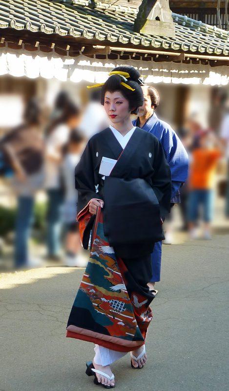 nikko edo wonderland oiran parade