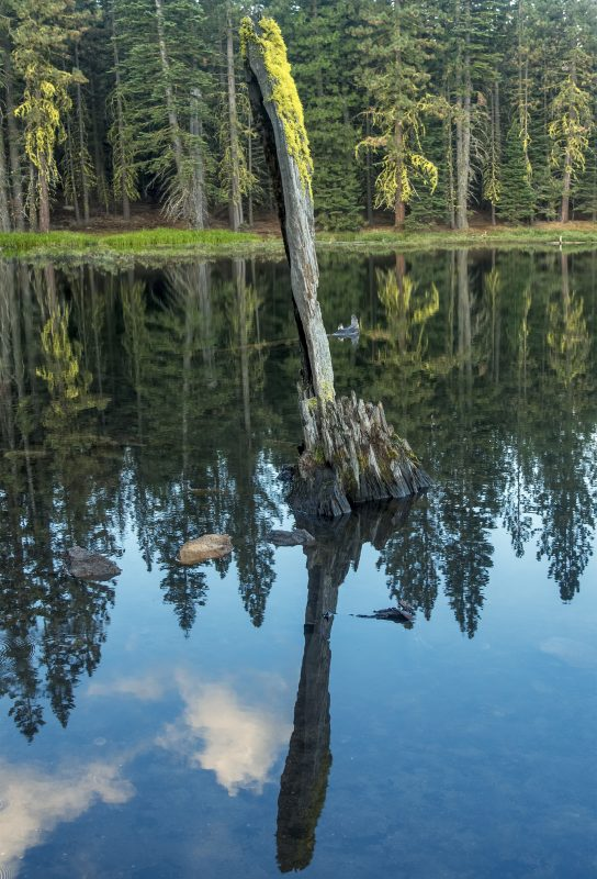 lassen manzanita lake