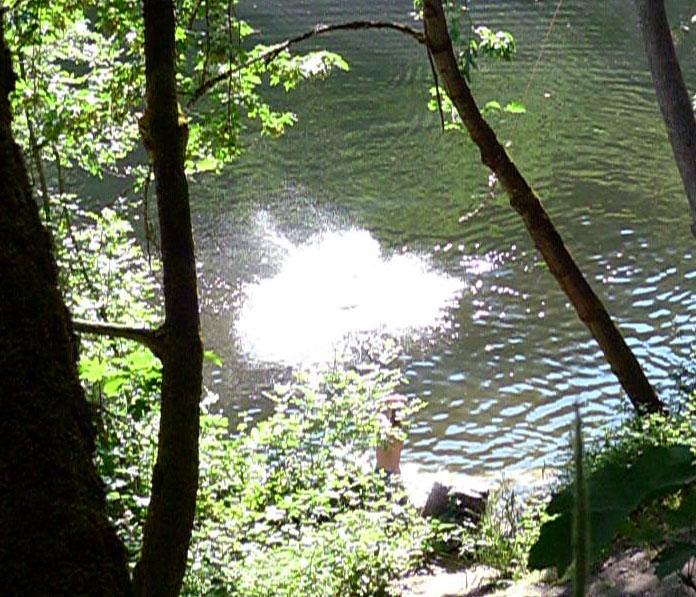 ashland oregon lithia park pond rope swing