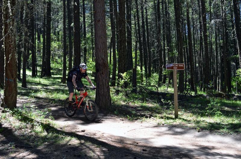 caterpillar trail mountain bike riding siskiyou mountains ashland oregon