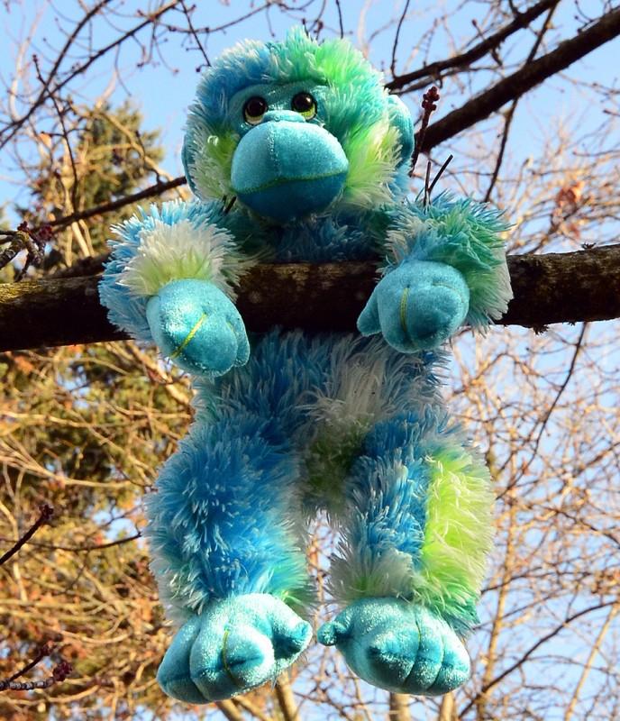 stuffed monkey animal tree ashland oregon b street