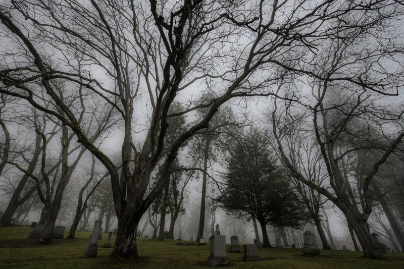 ashland oregon cemetery fog trees tomb stones