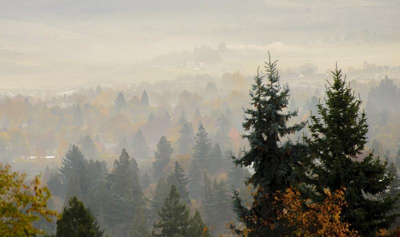 ashland early november light fog