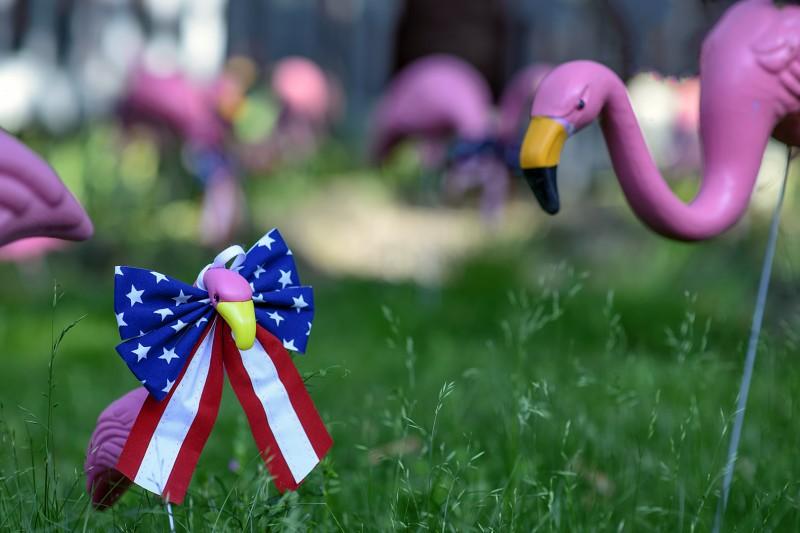 pink flamingos lawn ornaments babys memorial day flags
