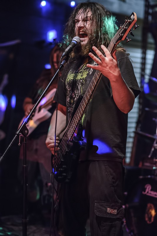 Davis Lynch Insanity's Reign Musichead