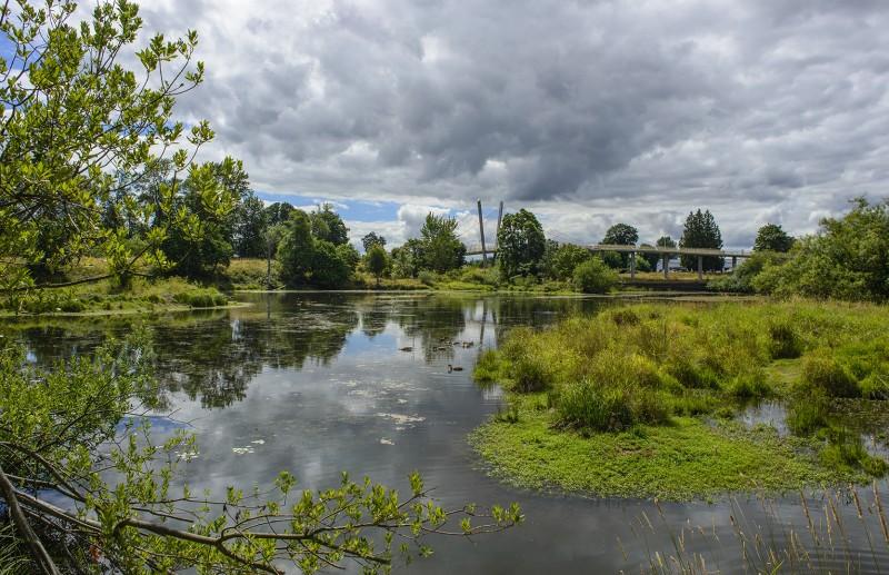 delta ponds city park eugene highway bridge