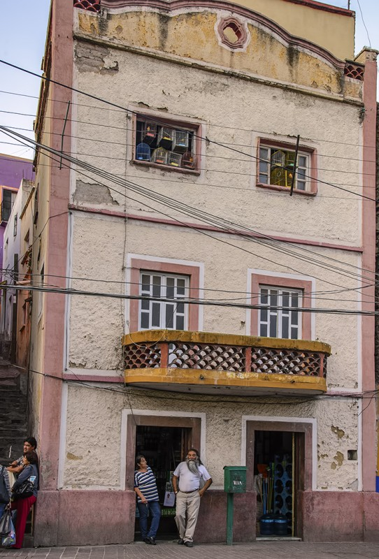 Guanajuato bearded mexican man shop owner birds in window mexico