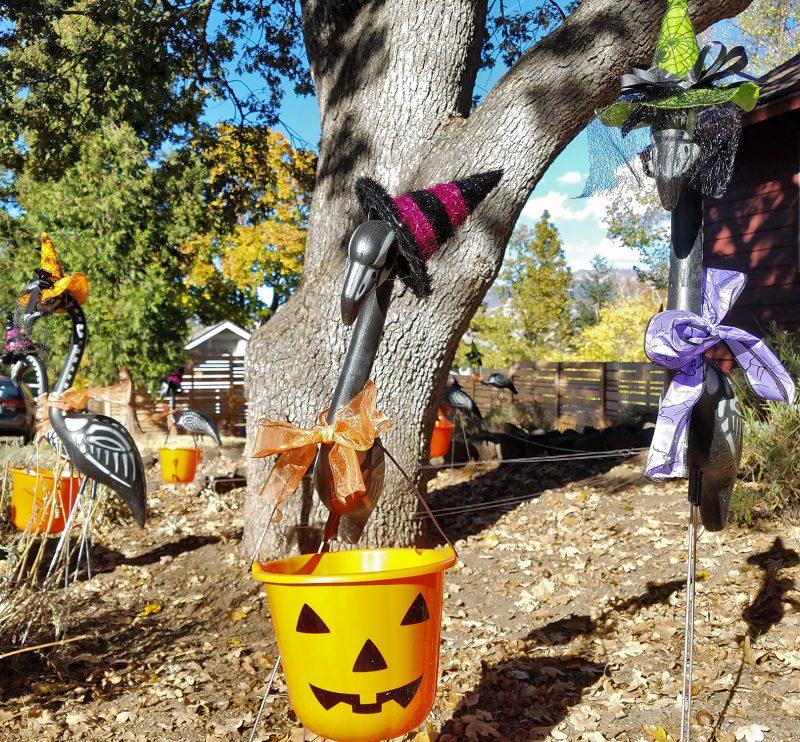 halloween-pink-flamino-lawn-ornaments