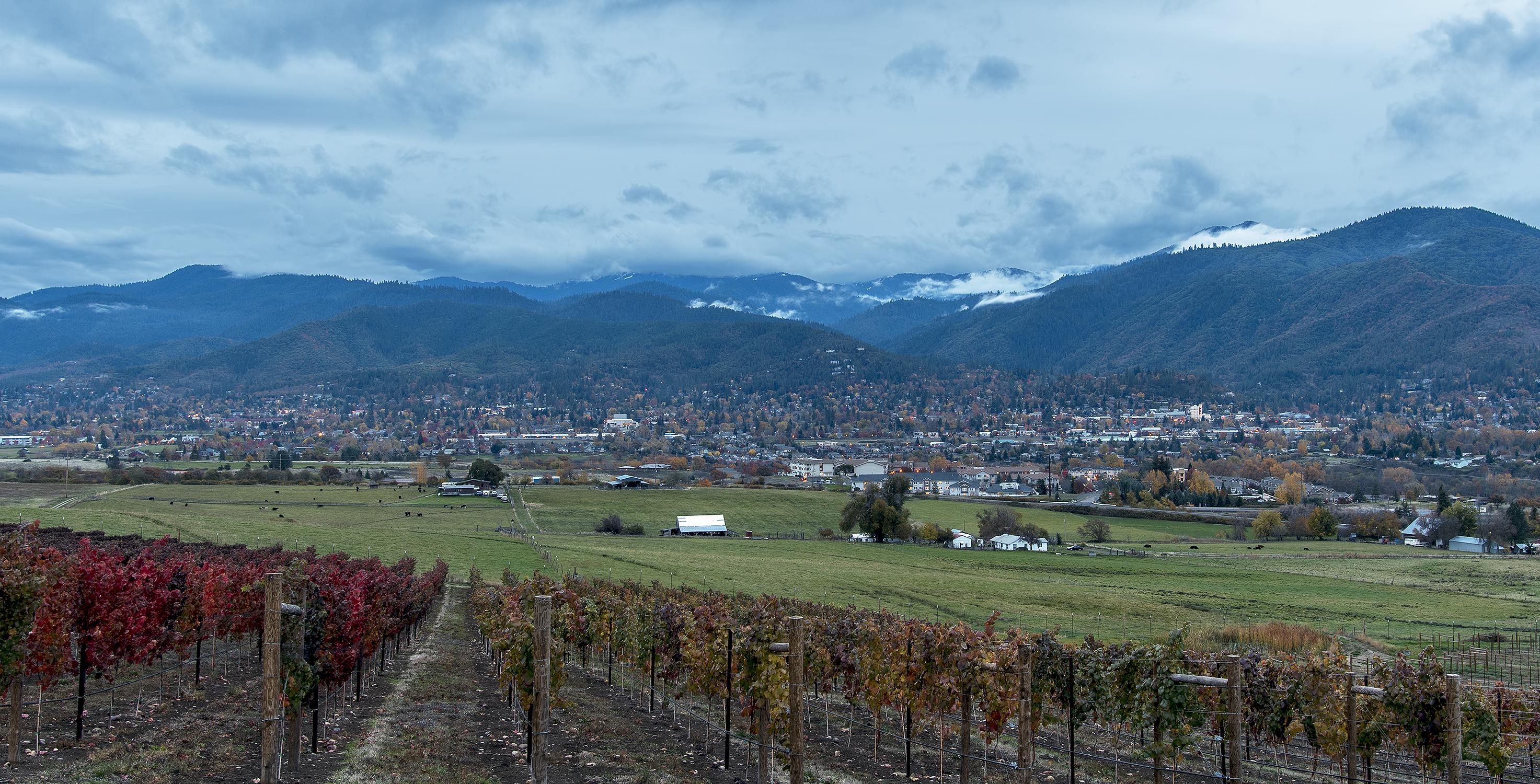 ashland-fall-autumn-dana-campbell-vineyard