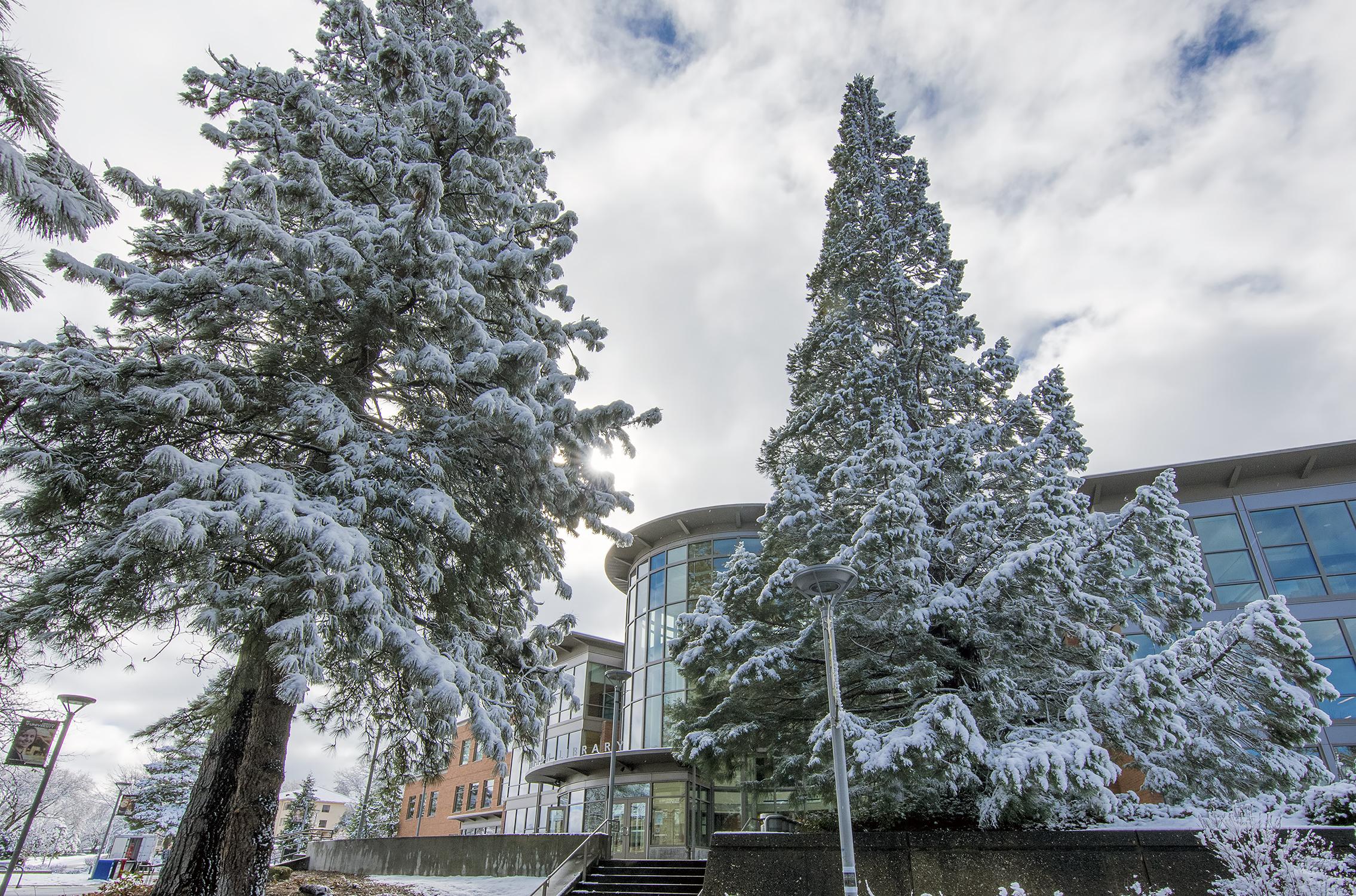 hannon library southern oregon university snow winter sou