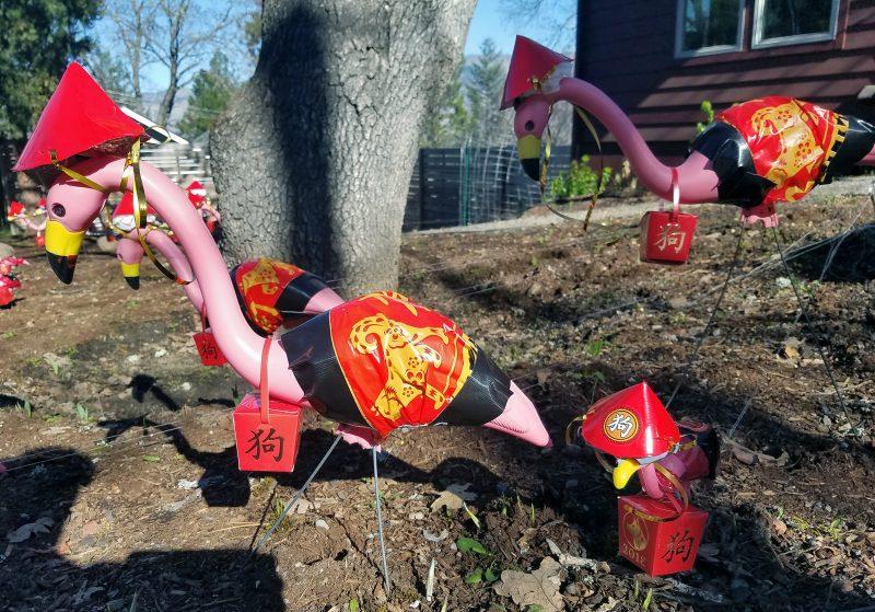 chinese new year pink flamingos