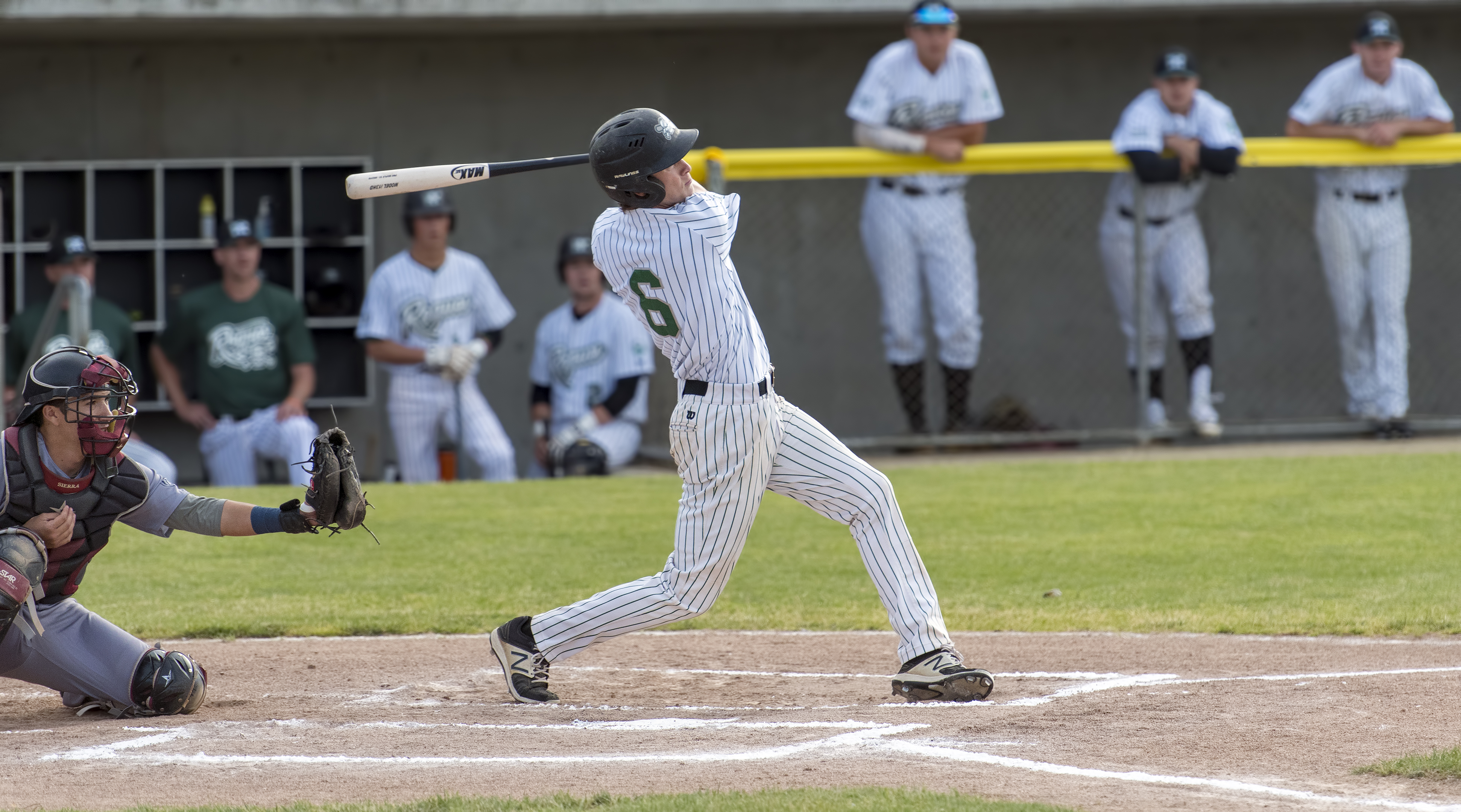 medford rogues cole carder