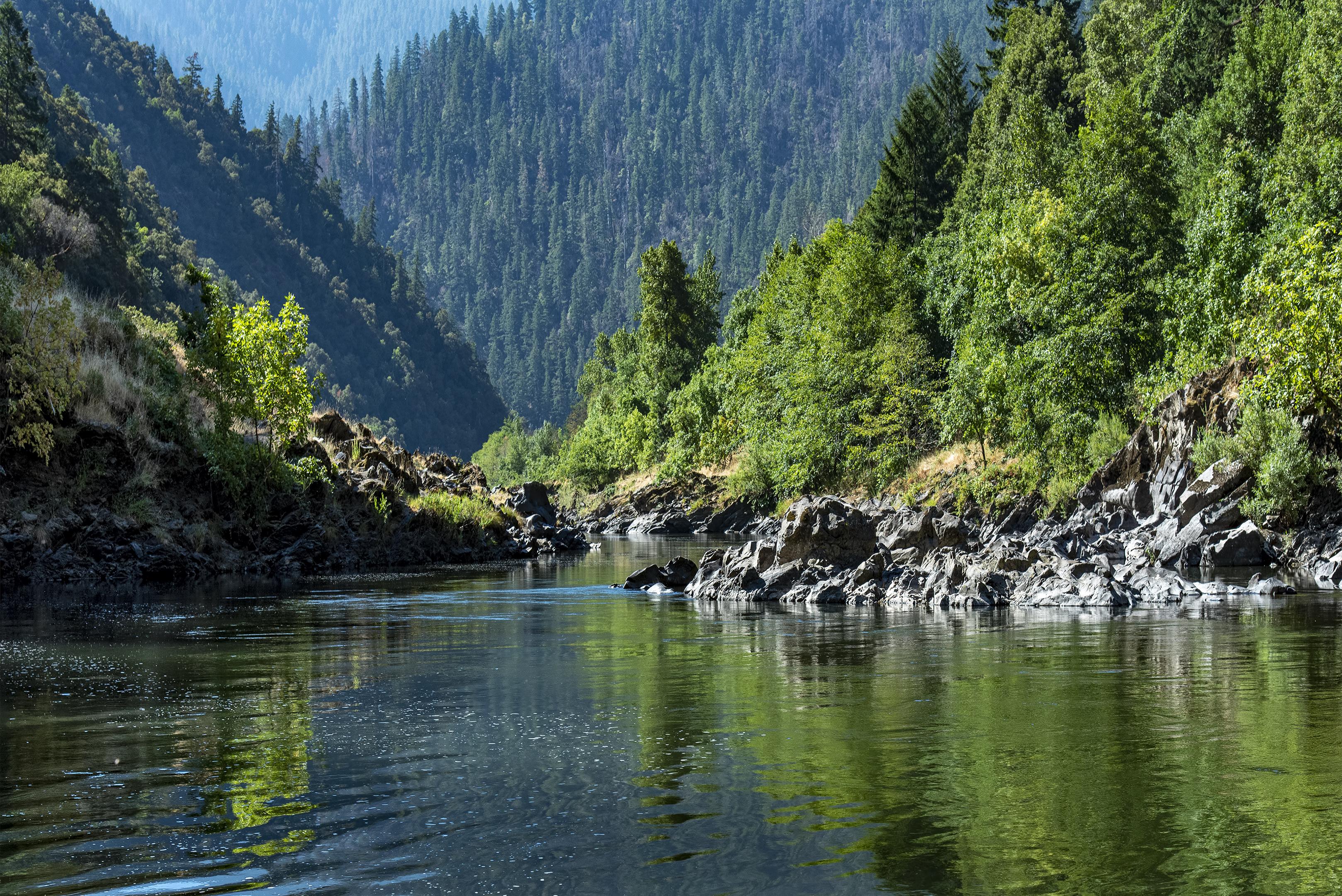 Rogue Wild & Scenic River