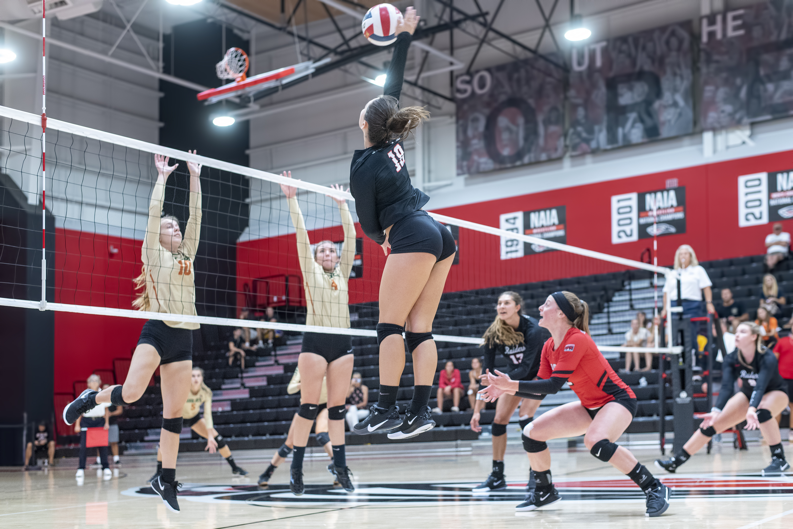 sou volleyball shelby young
