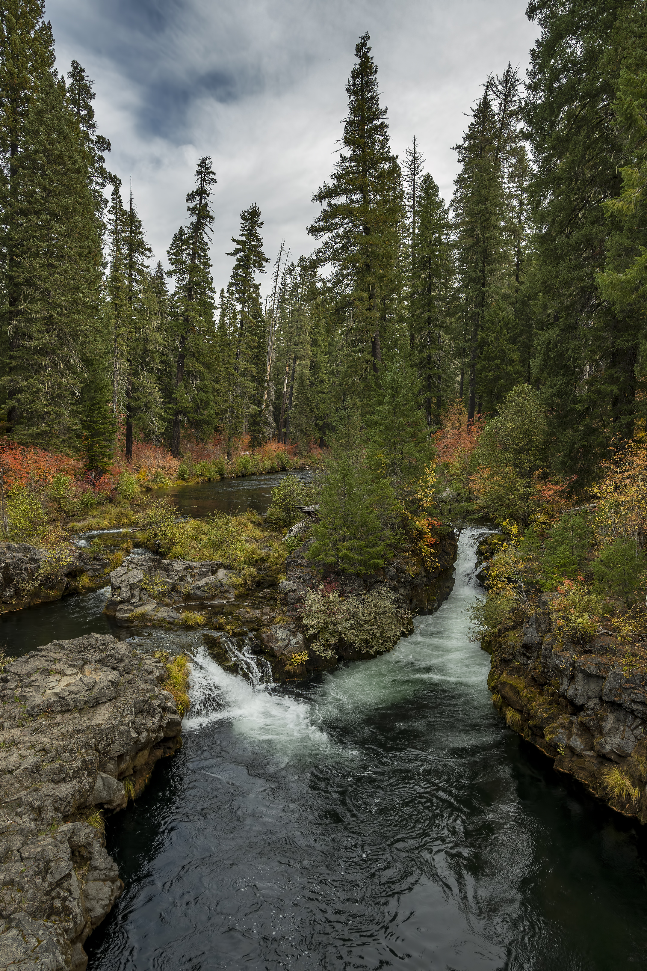 woodruff bridge rogue river upper trail