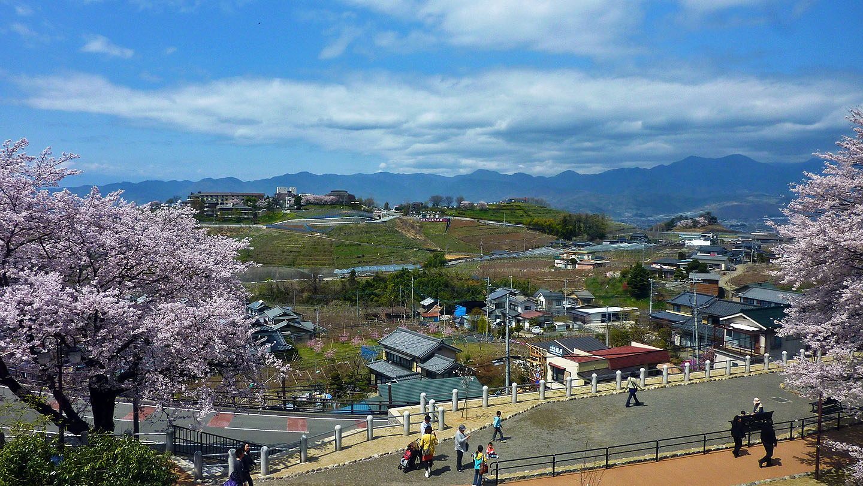 enzan higashiyamanashi station view cherry blossoms yamanashi ken sakura mountain view