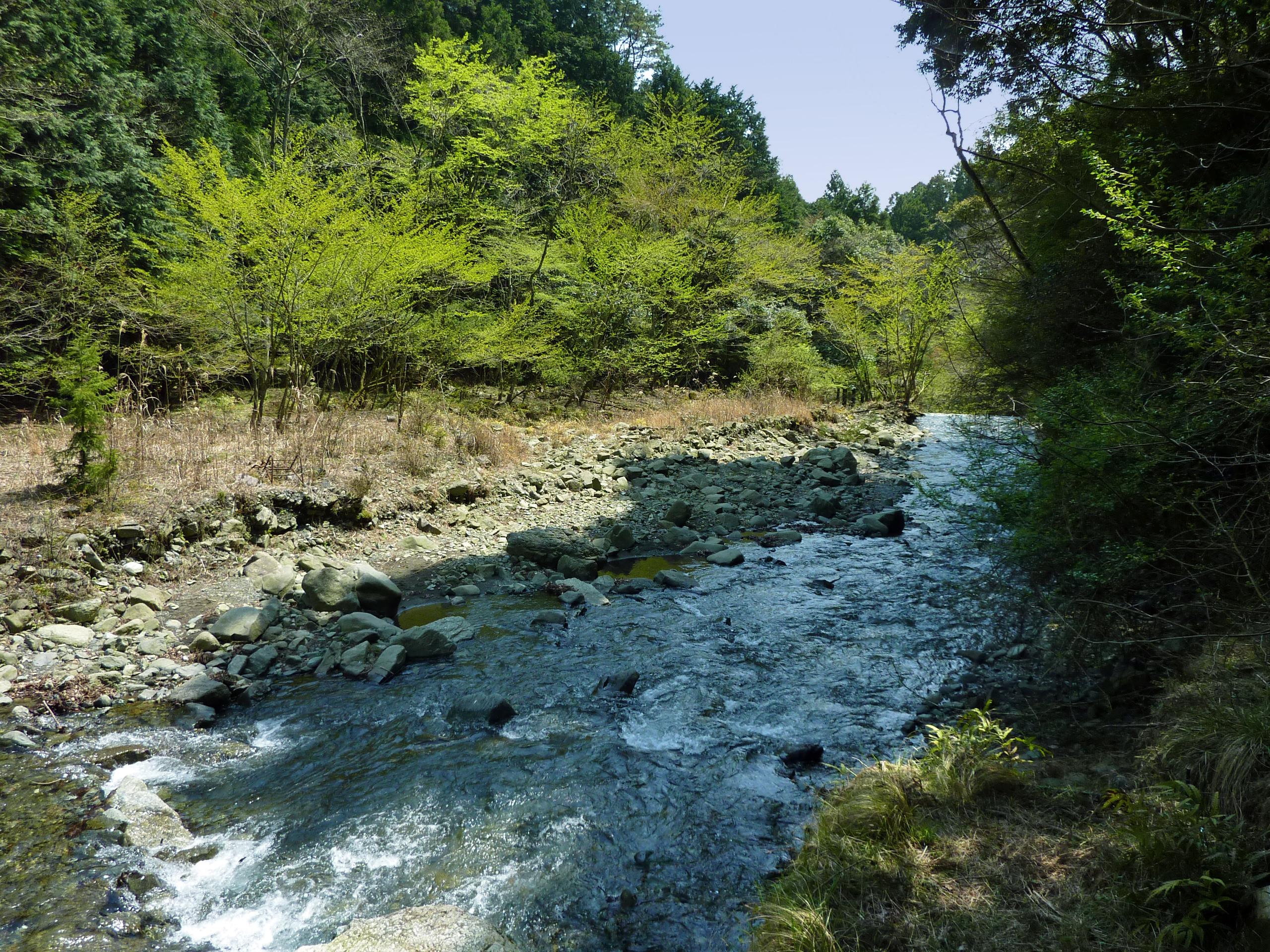 丹沢山  中津川 tanzawa hike near tokyo japan