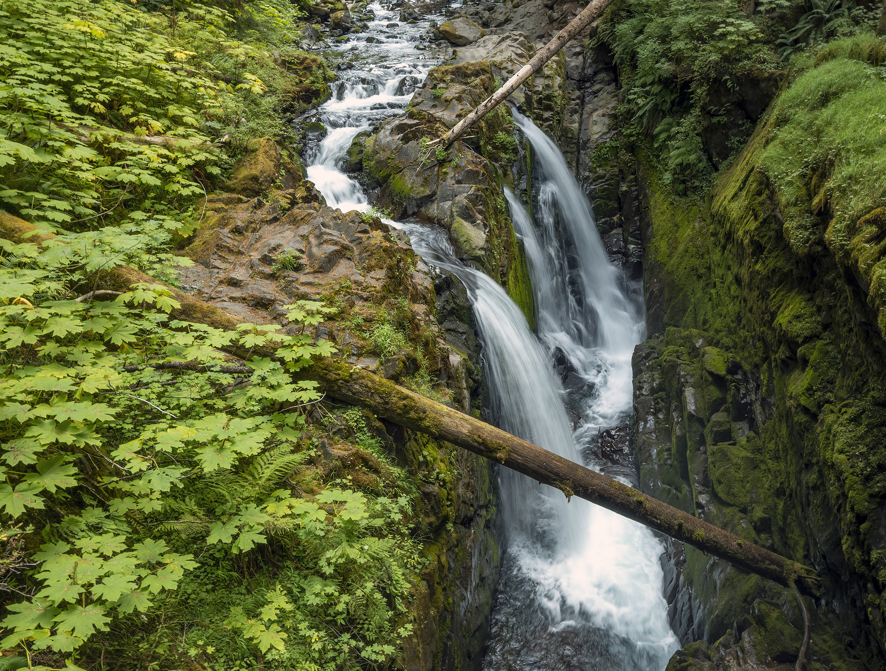 olympic national park waterfall Sol Duc Falls